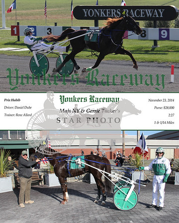 11232014 Race 4 - Star Photo