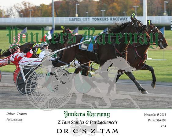 20141109 Race 12- Dr C's Z Tam