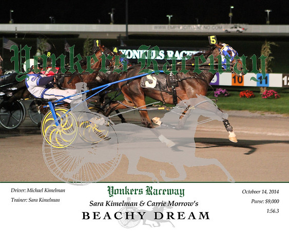 20141014 Race 4- Beachy Dream 2