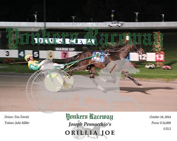 20141018 Race 10- Orrilia Joe