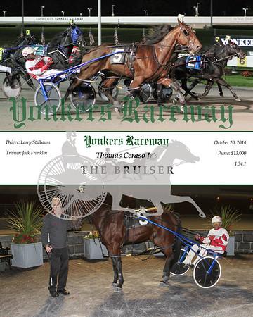20141020 Race 6- The Bruiser