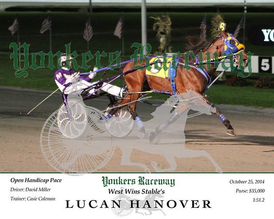 20141025 Race 4- Lucan Hanover