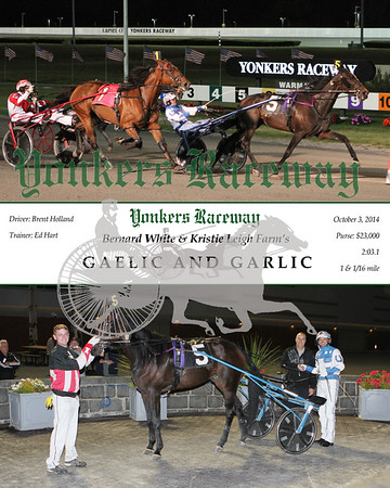 20141003 Race 5- Gaelic And Garlic
