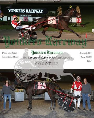 20141030 Race 2- Cocotier