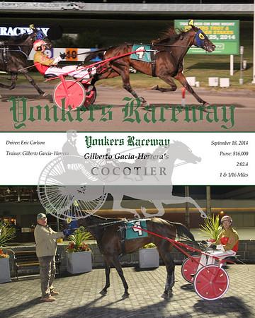 20140918 Race 5- Cocotier