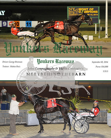 20140902 Race 10-Meetbehindthebarn