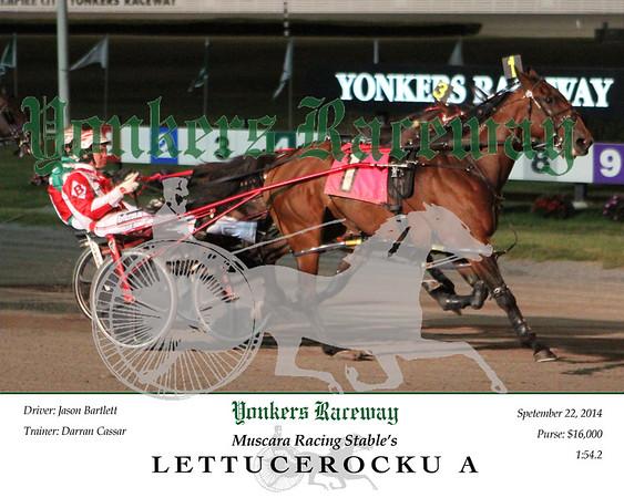 20140922 Race 2- Lettucerocku A