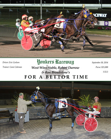 20140930 Race 8- For A Bettor Time
