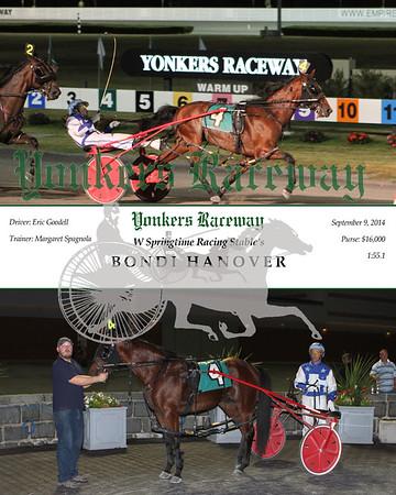 20140909 Race 9- Bondi Hanover