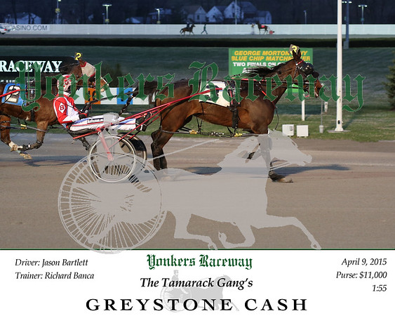 20150409 Race 1- Greystone Cash