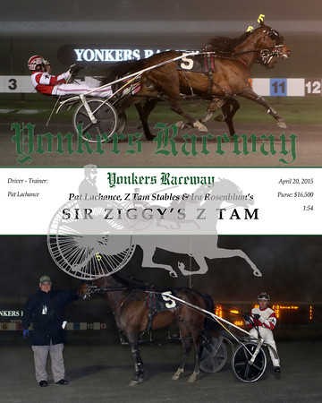 20150420 Race 10- Sir Ziggy's Z Tam