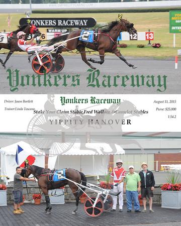 08112015 Race 3-Yippity Hanover