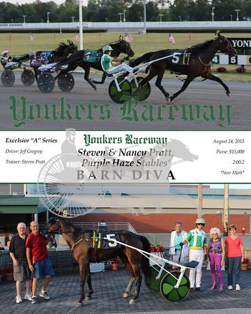 20150824 NB4- Barn Diva