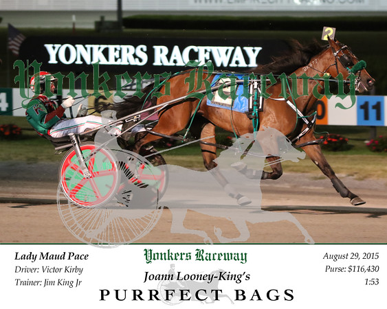 20150829 Race 7- Purrfect Bags 2