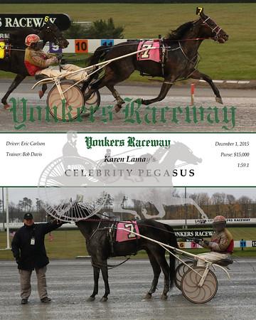 20151201 Race 7- Celebrity Pegasus