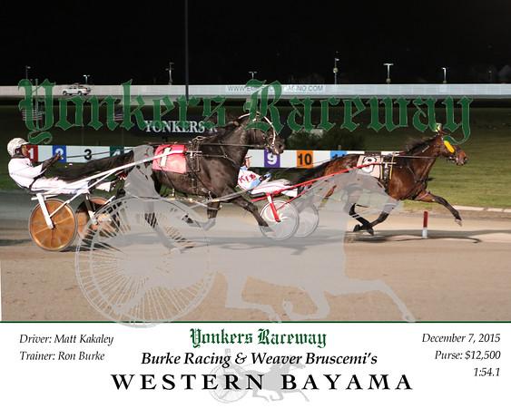20151207 Race 8- Western Bayama