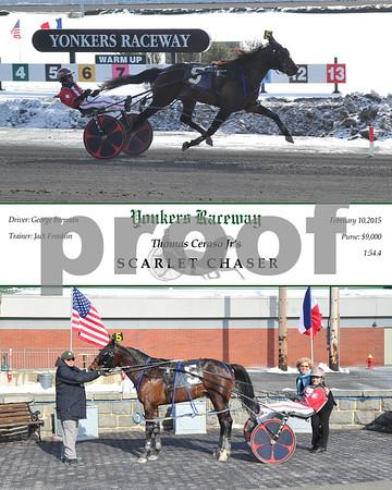 20150210 Race 4-Scarlet Chaser