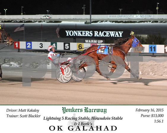 20150216 Race 4- OK Galahad 2