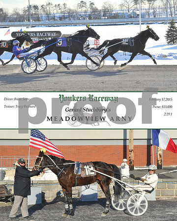 20150217 Race 8-Meadowview Arny