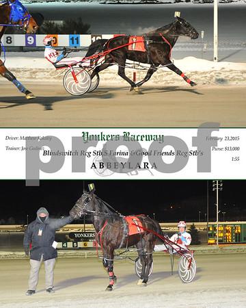 20150223 Race 6-Abbeylara