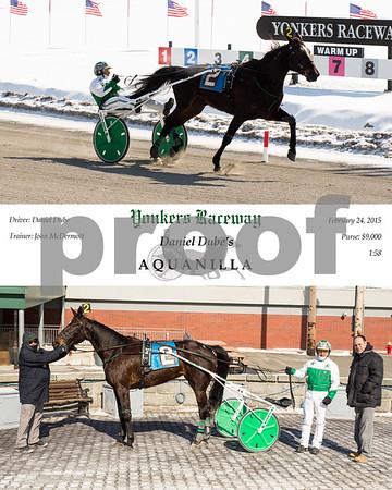 20140224 Race 4- Aquanilla