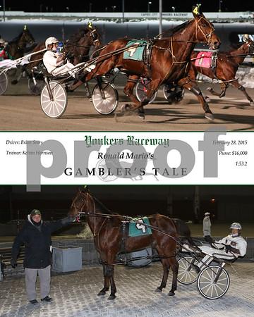 20150228 Race 1- Gambler's Tale