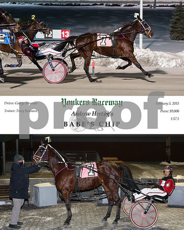 20150205 Race 5- Babe's Chip