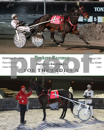20150206 Race 6- For The Ladies N