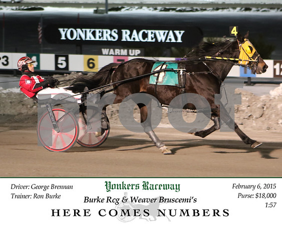 20150206 Race 4- Here Comes Numbers
