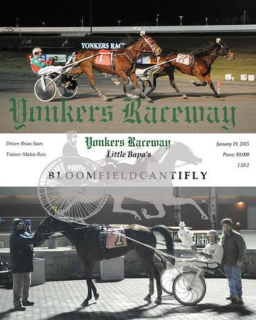 20150119 Race 2-Bloomfieldcantifly