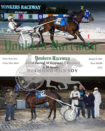 20150131 Race 2- Diamond Cowboy