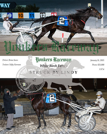 20150131 Race 11-Struck By Lindy