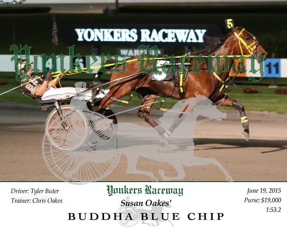 20150619 Race 8- Buddha Blue Chip