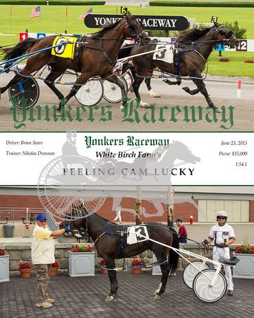 20150623 Race 1- Feeling Cam Lucky