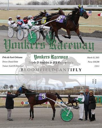 20150315 Race 6- Bloomfieldcantifly