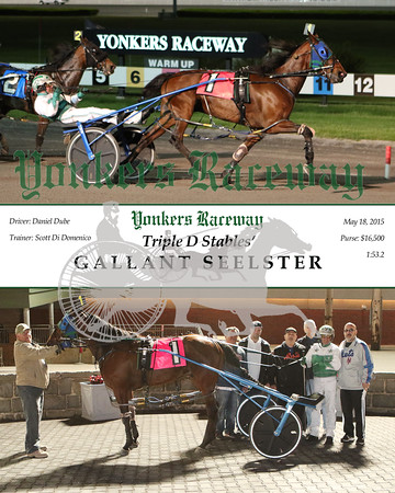 20150518 Race 8- Gallant Seelster