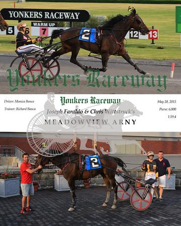 20150528 Race 2- Meadowview Arny