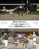 11132015 Race 12 - Delightful Dragon