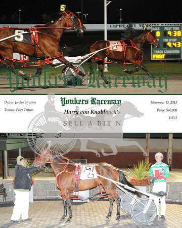 11132015 Race 8 - Sell A Bit N