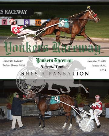 20151123 Race 2- Shes A Pansation