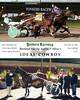 20151128 Race 8- Ideal Cowboy