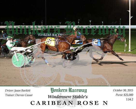 20151030 Race 12- Caribbean Rose N