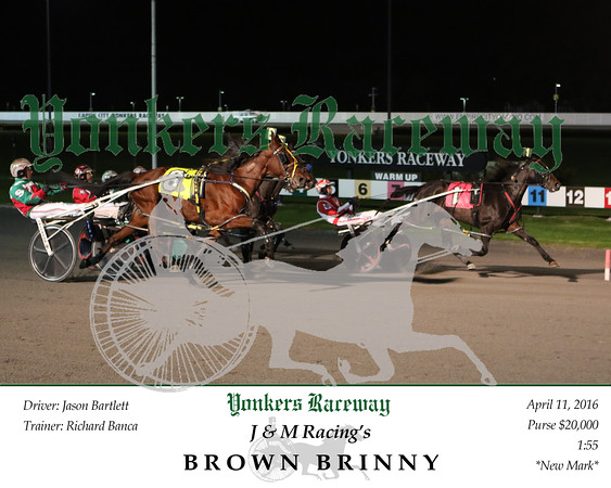 20160411 Race 9- Brown Brinny