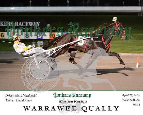 20160418 Race 8- Warrawee Qually