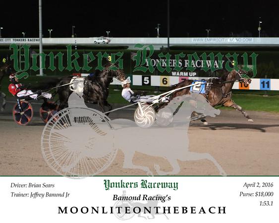 20160402 Race 4- Moonliteonthebeach