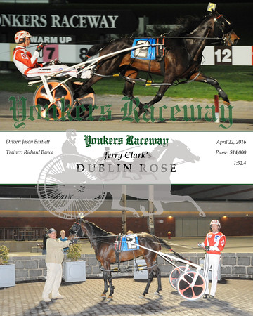 20160422 Race 5- Dublin Rose