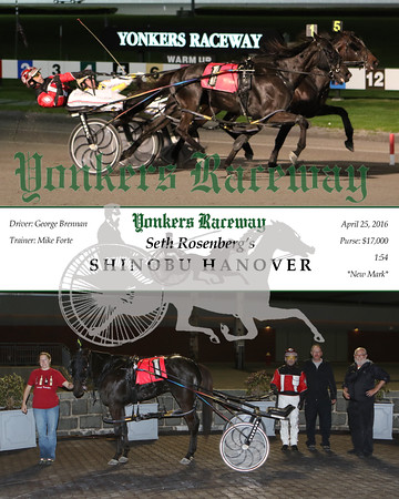 20160425 Race 7- Shinobu Hanover