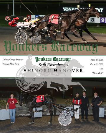 20160425 Race 7- Shinobu Hanover 1
