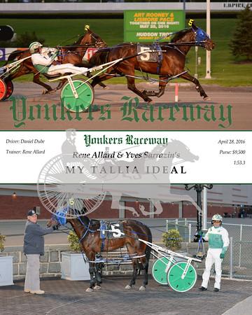 20160428 Race 2- My Tallia Ideal