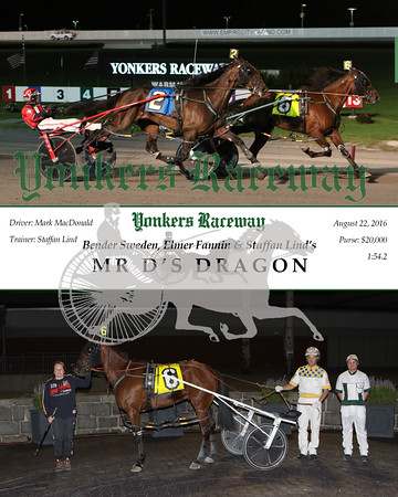 20160822 Race 8- Mr D's Dragon